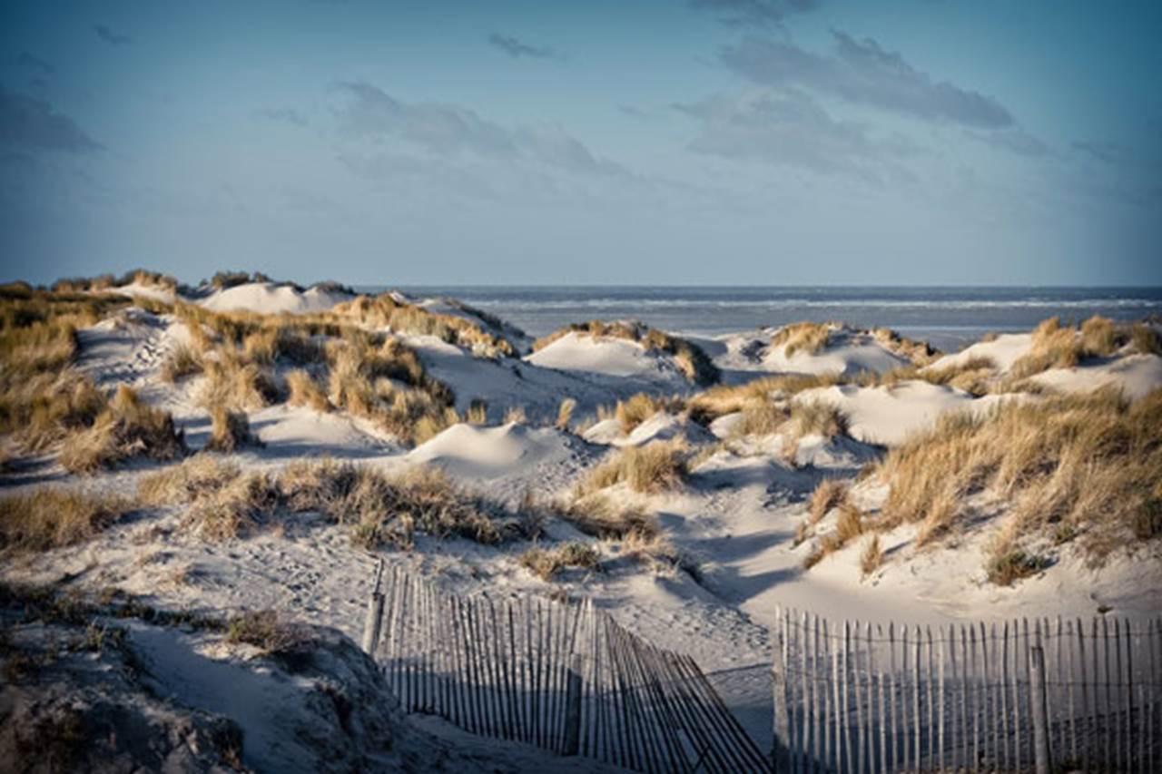 dunes-caenen-380