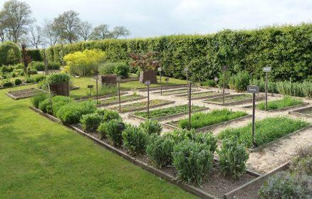 Jardins du Manoir d'Hénocq