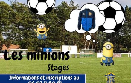 Les Minions Stages