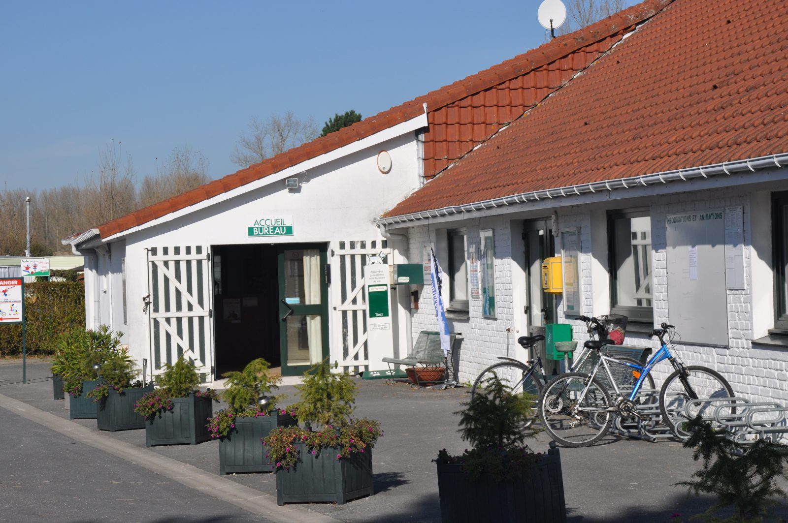 pomme-de-pin-camping
