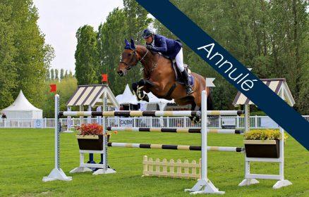 Equitation – Concours de Saut d'Obstacles Club / Poney / Amateur